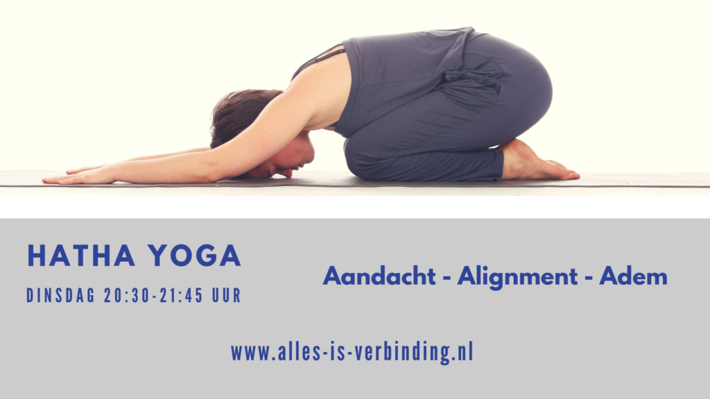 Hatha flow yoga Alles is verbinding